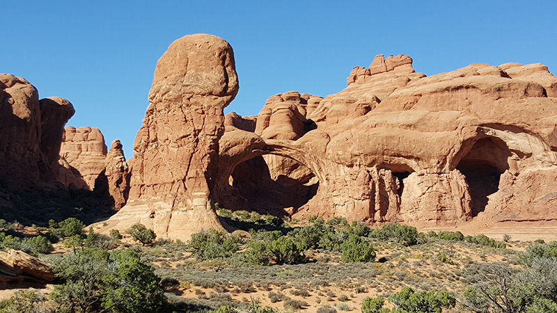 Arches in Arches National Park, Utah