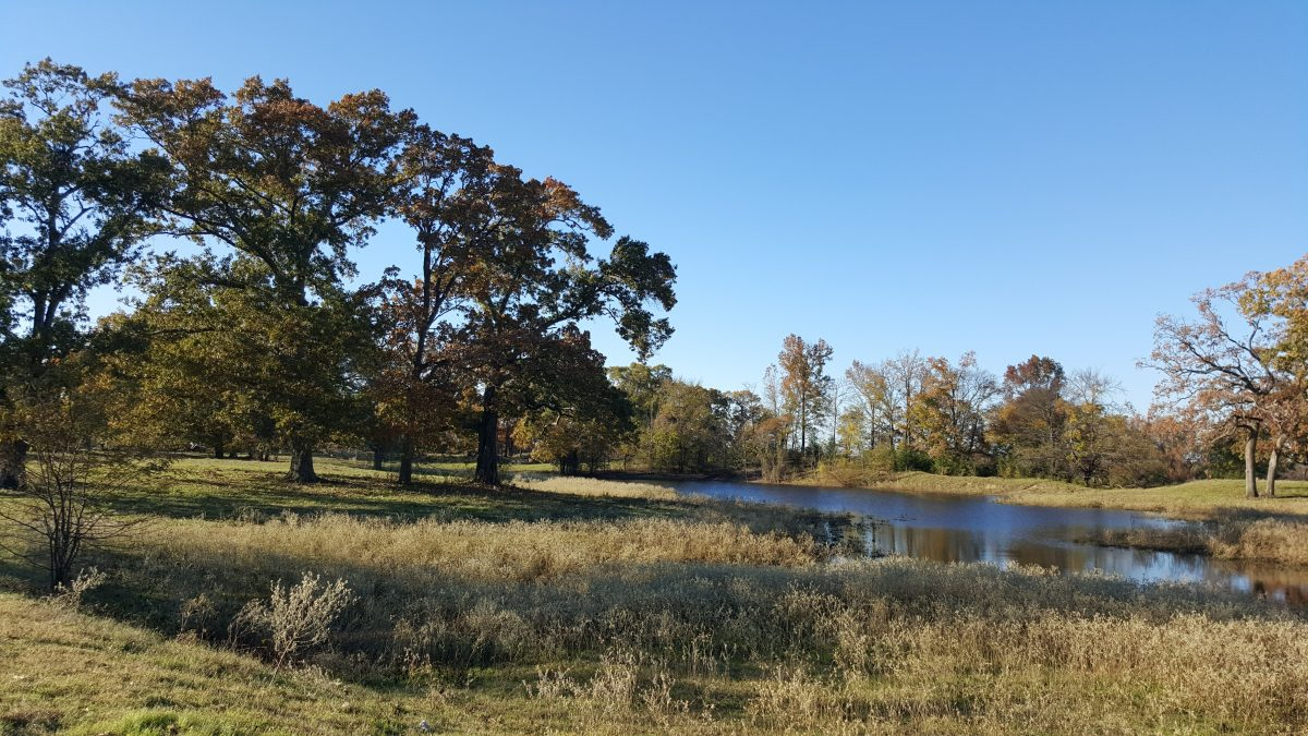 One of the many beautiful spots on the 6T Ranch.